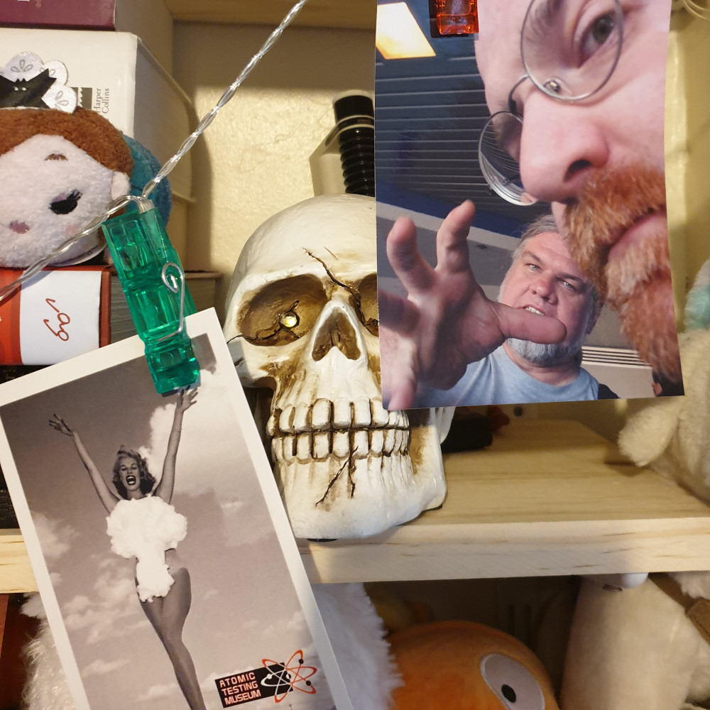 A photo and a postcard hanging off of clips with a skull on a shelf behind them